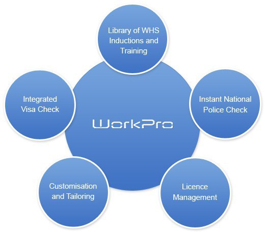 WorkPro Process